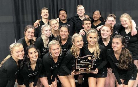 Cheer represents at state competition; sideline team takes home state title