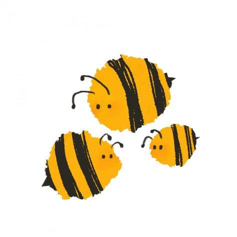 "City Councilor Brooks discusses Tualatin's ""Bee City"" designation"