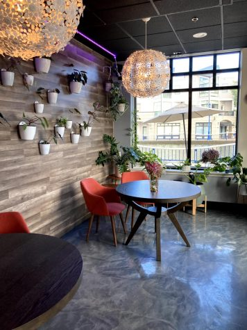 Local cafes provide new places to study